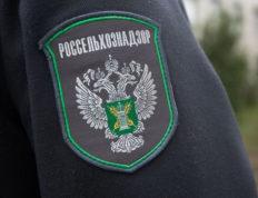 Россия обнаружила случаи ложного транзита