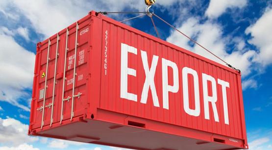 rex экспорт