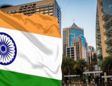indiay1 232x178 - Перспективы сотрудничества с Индией